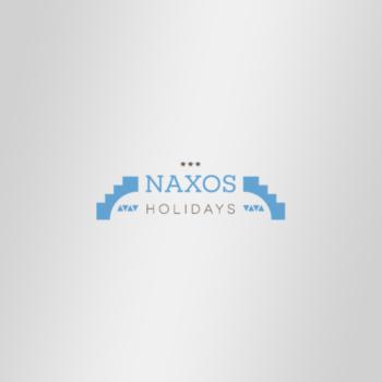 1.Hotel Naxos Holidays-550x550 copy
