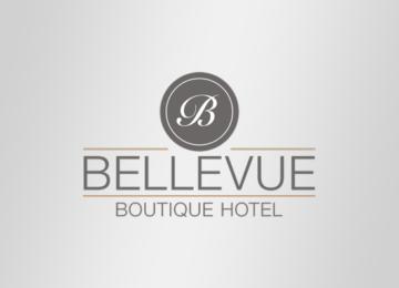 3.Hotel Bellevue ΓΕΡΜΑΝΙΑ-550x550 copy